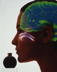 aromatherapy-1