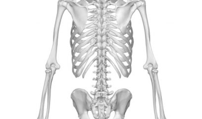 feature-image-oh-coccyx-my-coccyx